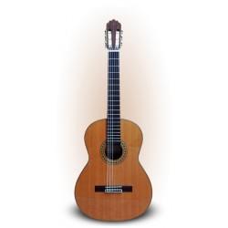 Guitarra Joan Cashimira 56