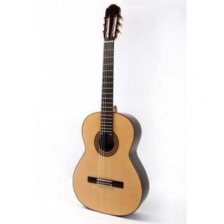 Guitarra Raimundo 130 Palosanto