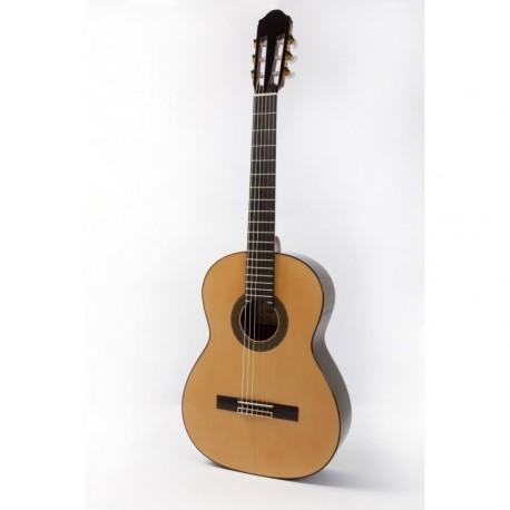 Guitarra Raimundo 128 Palosanto