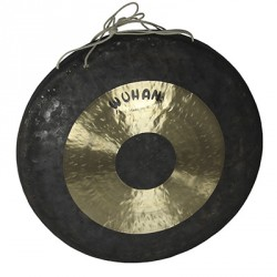 "Gong WUHAN 12"""