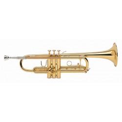 Trompeta BACH TR-300